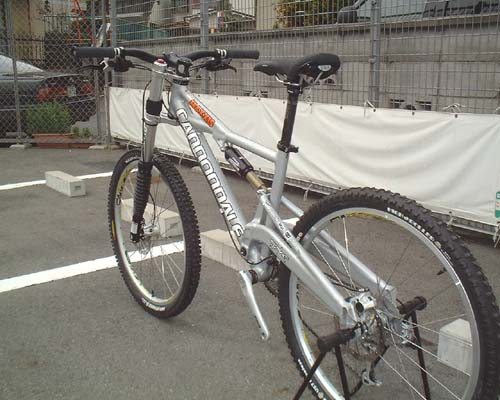 cannondale prophet 1000 weight loss